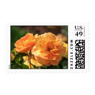 Orange Rose Postage Stamps