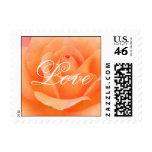 Orange Rose Stamp