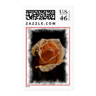 Orange Rose Stamp 4