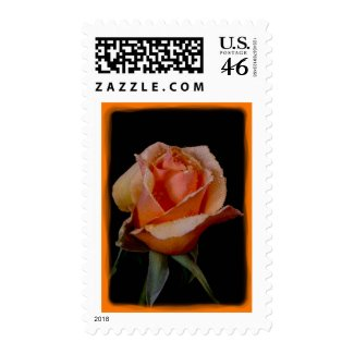 Orange Rose Stamp 5
