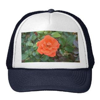 Orange Rose Trucker Hat