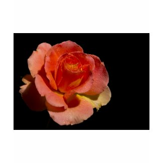 Orange Rose zazzle_shirt