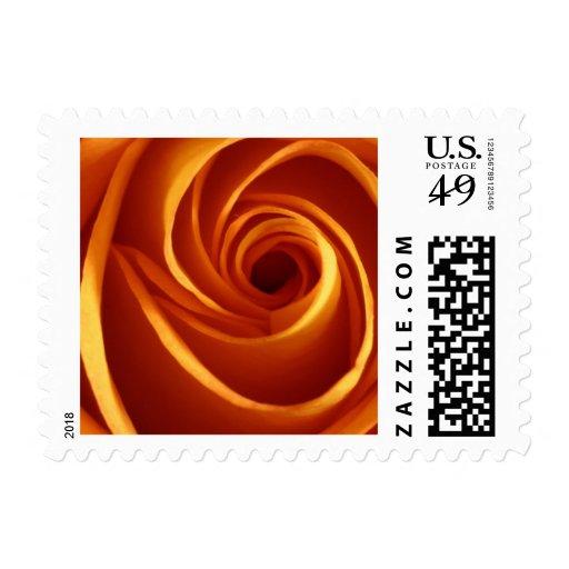 Orange Rose Wedding Postage Stamp
