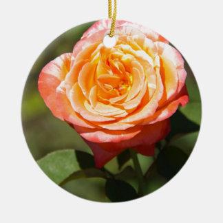 Orange Rose with Pink Edges Ceramic Ornament