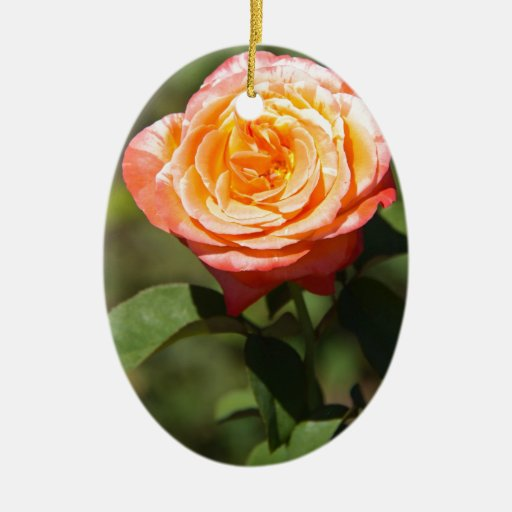 Orange Rose with Pink Edges Double-Sided Oval Ceramic Christmas Ornament