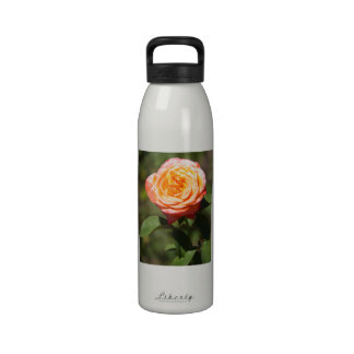 Orange Rose with Pink Edges Reusable Water Bottle