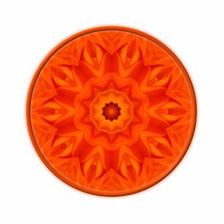 Orange Roses kaleidoscope Photo Sculpture