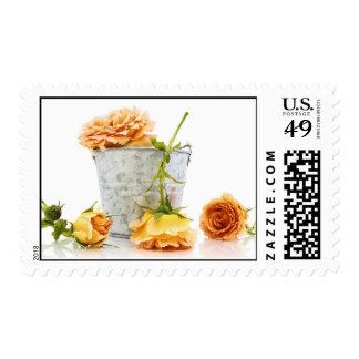Orange roses picking postage stamps