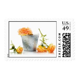 Orange roses picking stamps