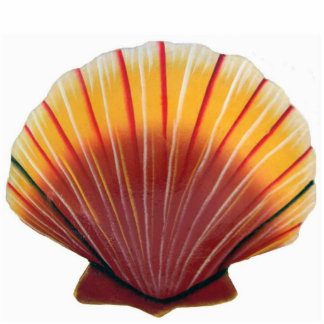Orange Scallop Shell Ornament