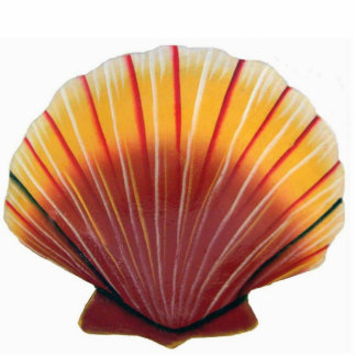 Orange Scallop Shell Sculpture