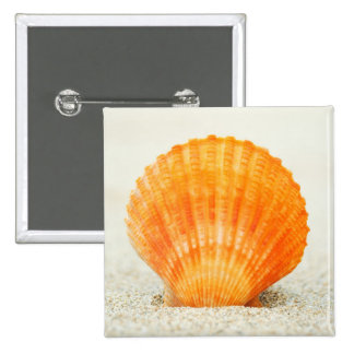 Orange Scallop Shell Standing Upright In Sand Pinback Button