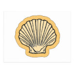Orange Sea Shell Postcard