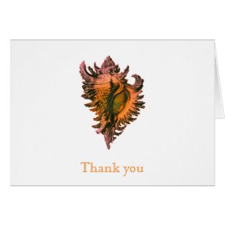 Orange Sea Shell Thank You Note Cards