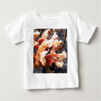 Orange Sea Sponge Baby T-Shirt