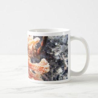 Orange Sea Sponge Coffee Mug