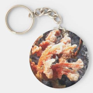 Orange Sea Sponge Keychain
