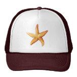 Orange Sea Star, Starfish Mesh Hat