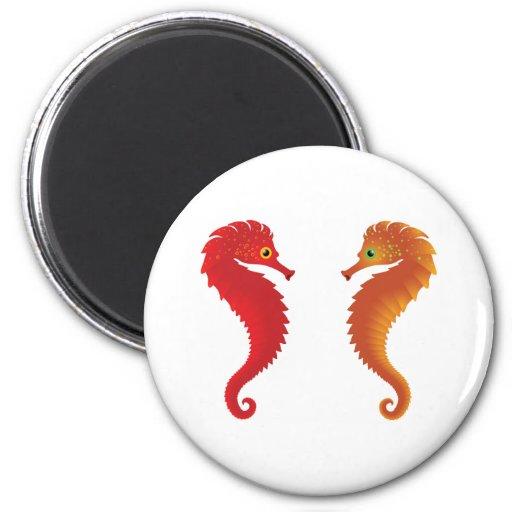 orange seahorses magnets