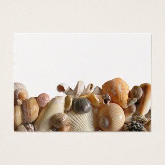 Orange Seashells Blank Place Cards