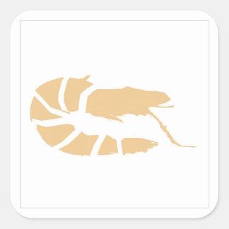 orange shrimp square sticker
