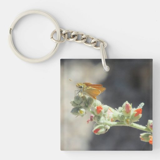 Orange Skipperling Butterfly Square Acrylic Key Chains