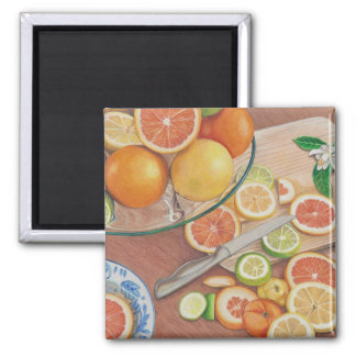 orange slice display colored pencil drawing print 2 inch square magnet