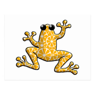 Orange Slices Frog Postcard