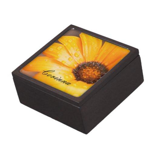 Orange Spring Flash African Daisy Close Up Gift Box