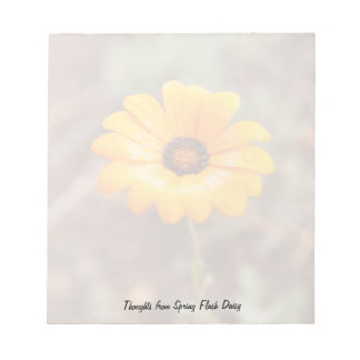 Orange Spring Flash African Daisy Close Up Photo Note Pad