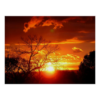 Orange Squash Sunset Poster