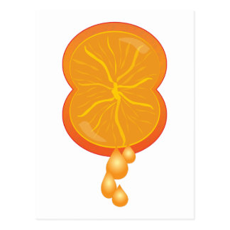 Orange Squeeze Postcard