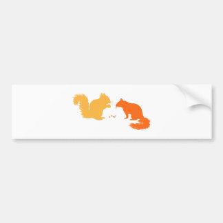 Orange Squirrels Bumper Stickers