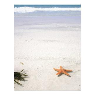 Orange starfish on a white sandy beach letterhead