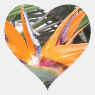 Orange Strelitzia Flower Heart Sticker