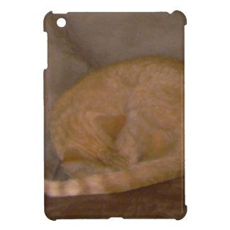 Orange striped cat cards tee clock ornament iPad mini covers