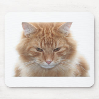 Orange Stripped Tabby Cat Mouse Pad