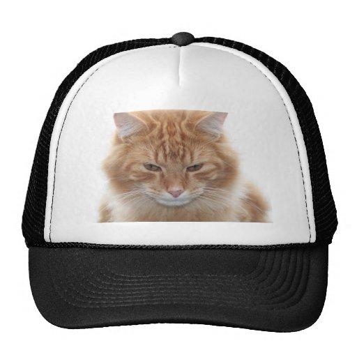 Orange Stripped Tabby Cat Trucker Hat