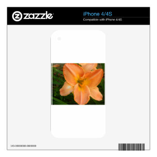 Orange Summer Lilly Skin For iPhone 4