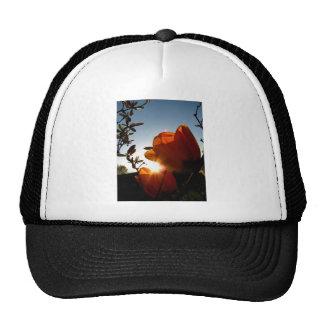Orange Sun and Petals Trucker Hat