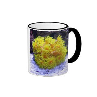Orange Sun Coral Ringer Mug