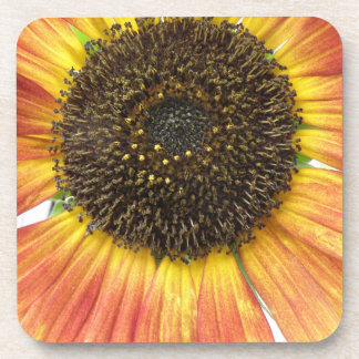 Orange Sunflower Cork Coaster