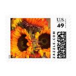 Orange Sunflowers Postage Stamp