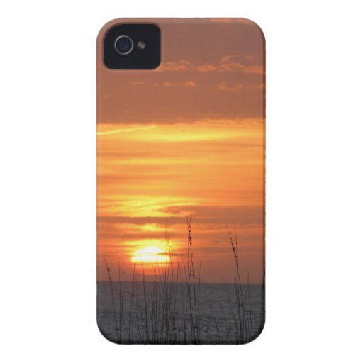 Orange Sunset Florida iPhone 4 Case-Mate Cases