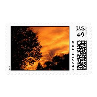Orange Sunset Postage Stamp