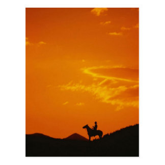 Orange Sunset with Cowboy Silhouette Postcard