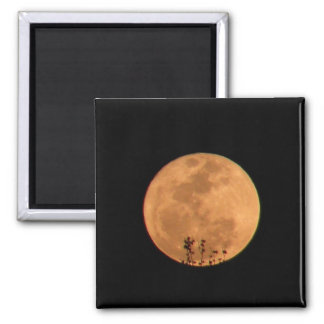 Orange Super Moon Magnet