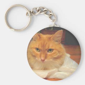 Orange Tabby Basic Round Button Keychain
