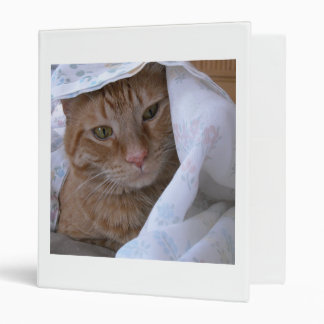 Orange Tabby Cat 3 Ring Binder