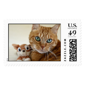 Orange Tabby Cat and His Best Friend Postage